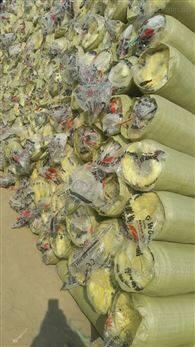 大城鸡舍保温毡 玻璃棉毡检测报告